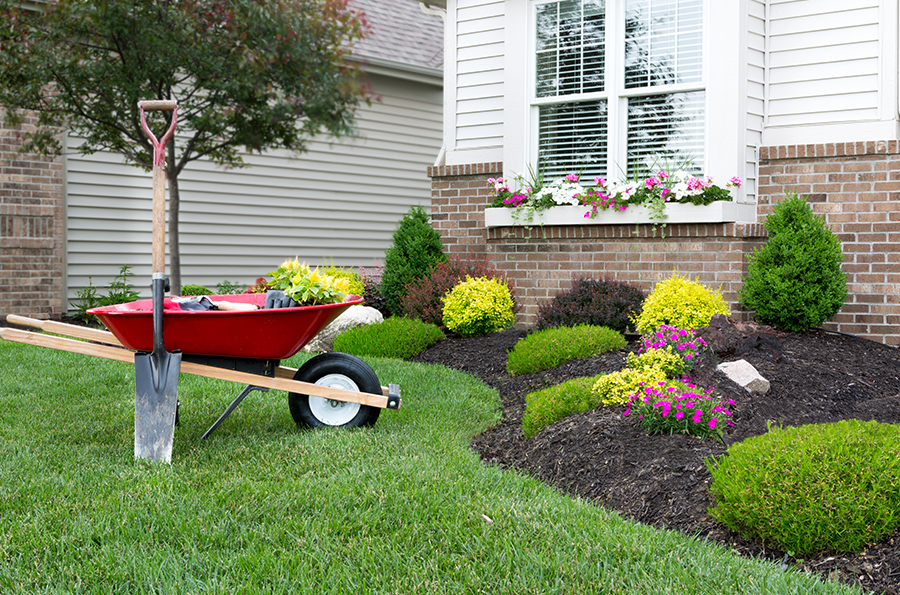 Landscaping-Blog-Picture